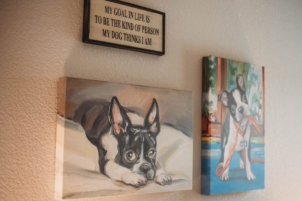 pet friendly decor ideas